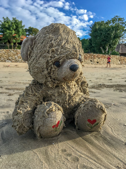 Look at this giant teddy somebody found on the beach