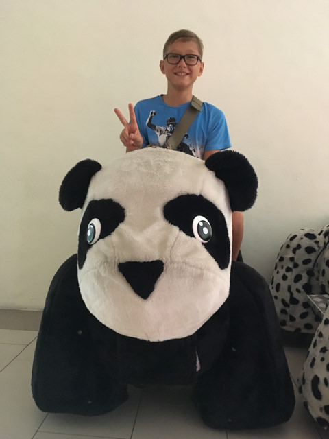 How about a ride on the Panda?