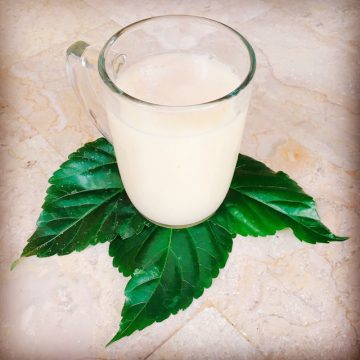 Jus Sirsak enak sekali! Soursop juice is delicious!